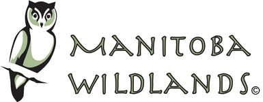 Manitoba Wildlands logo